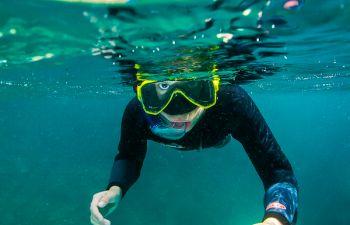 Balade palmée guidée (snorkeling) dans les Calanques