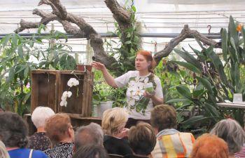 Tout savoir sur les orchidées : visite de serres dans le Var