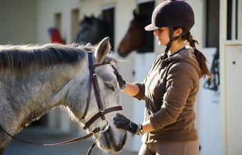 Découverte de l'équitation au cœur de la pinède de Pastré