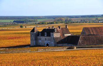 Demi-journée à la découverte de la Bourgogne et de ses vins