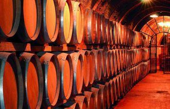 Circuit œnologique à la découverte des vins de Provence