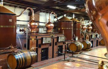 Circuit d'une journée dans les vignobles de Bordeaux et Cognac