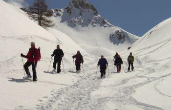 Vars : randonnée nature en raquettes à neige avec un guide
