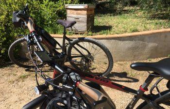 Balade gourmande à vélo électrique dans l'arrière-pays varois