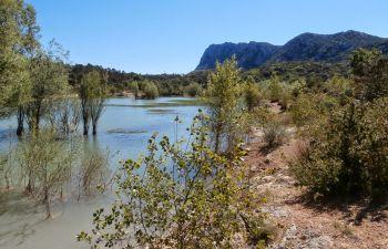 Sorties Poésie et Nature près de Montpellier