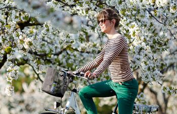 Découverte des Alpilles à vélo électrique