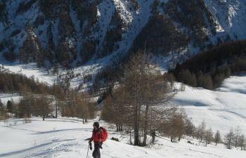 Journée de randonnée en raquettes dans un environnement sauvage