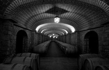 Excursion viticole de luxe dans le Val de Loire