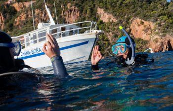 Baptême de plongée au pied du massif de l'Estérel