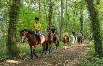 Balade à cheval dans la forêt de la Baule