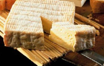 Découverte des cidres et fromages de Normandie