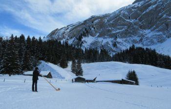 Randonnée encadrée au son du Cor des Alpes