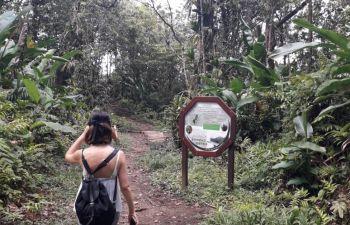 Visite du Nord de la Martinique en petit groupe