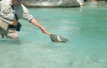 Stage 2 jours de pêche à la mouche dans les Pyrénées