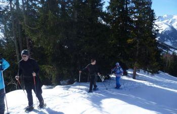 Randonnée en raquettes à la journée dans les Alpes