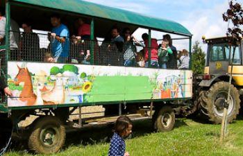 Découverte de la Ferme et ses animaux en tracteur remorque