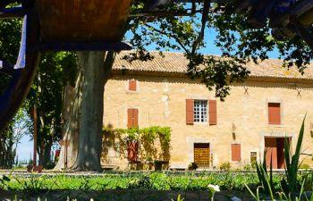 Visite du mas provençal de Frédéric Mistral