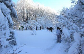 Balade en raquettes à neige dans les Hautes Vosges d'Alsace