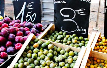 Gourmet Walking Tour of Montpellier for English speaking travelers