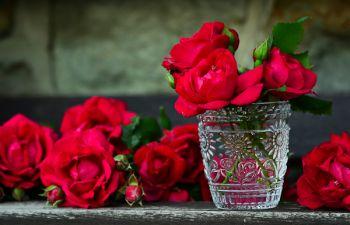 Atelier d'art floral sur l'île de Ré