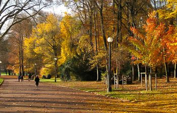 Visite de Lyon coté jardin : un tour au Parc de la Tête d'Or